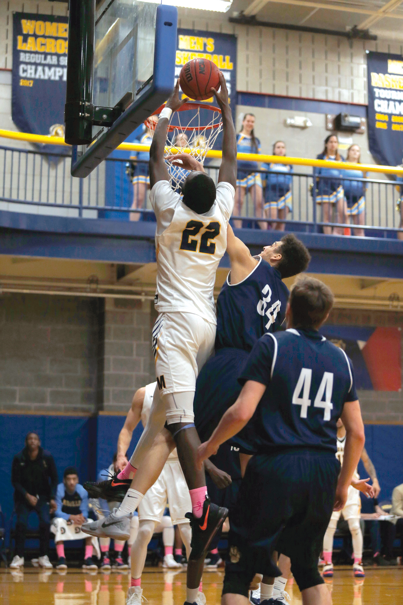 Medaille College Mens Basketball NCAA DIV III